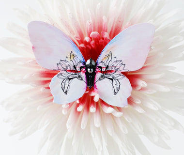 Dreamy Rosy Butterfly Brooch