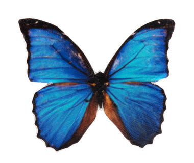 Mini Blue Kids Butterfly Brooch