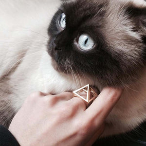 Gold pyramid ring of person petting cat.