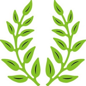 Cheery Lynn Designs - Olive Branches