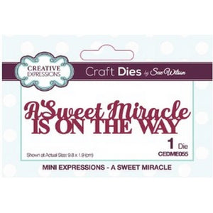 Sue Wilson Designs - Dies - Mini Expressions Collection - A Sweet Miracle