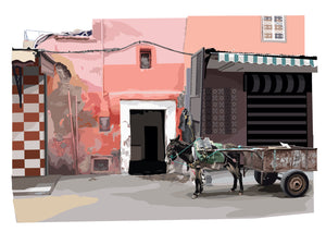 Donkey and cart - Marrakesh