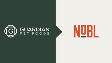 Blog: The Evolution of a Brand: From Guardian to NOBL