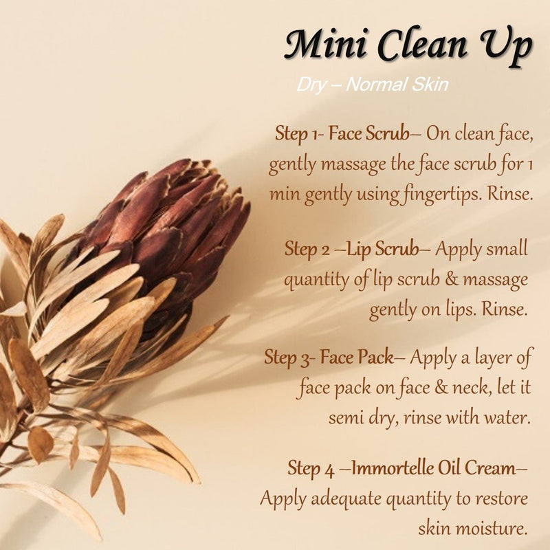 Mini Clean Up- Dry to Normal Skin