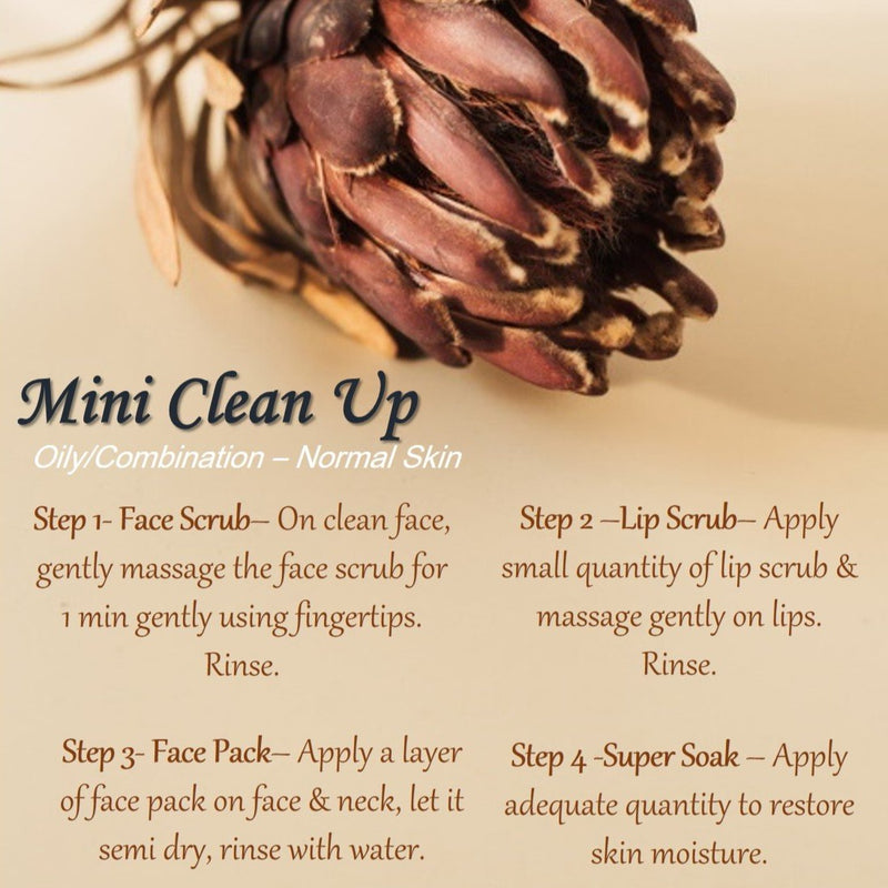 Mini Clean Up- Oily/ Combination to Normal Skin