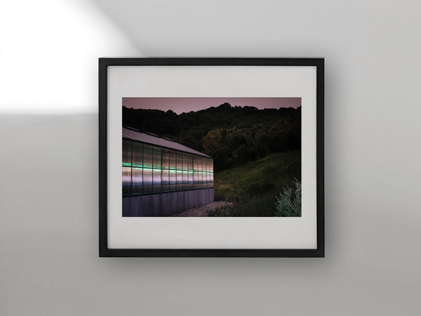 "Untitled ""Greenhouse"" — 2020"