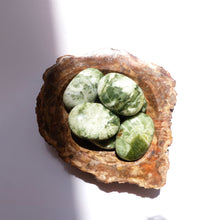 Load image into Gallery viewer, Seraphinite Palm Stones