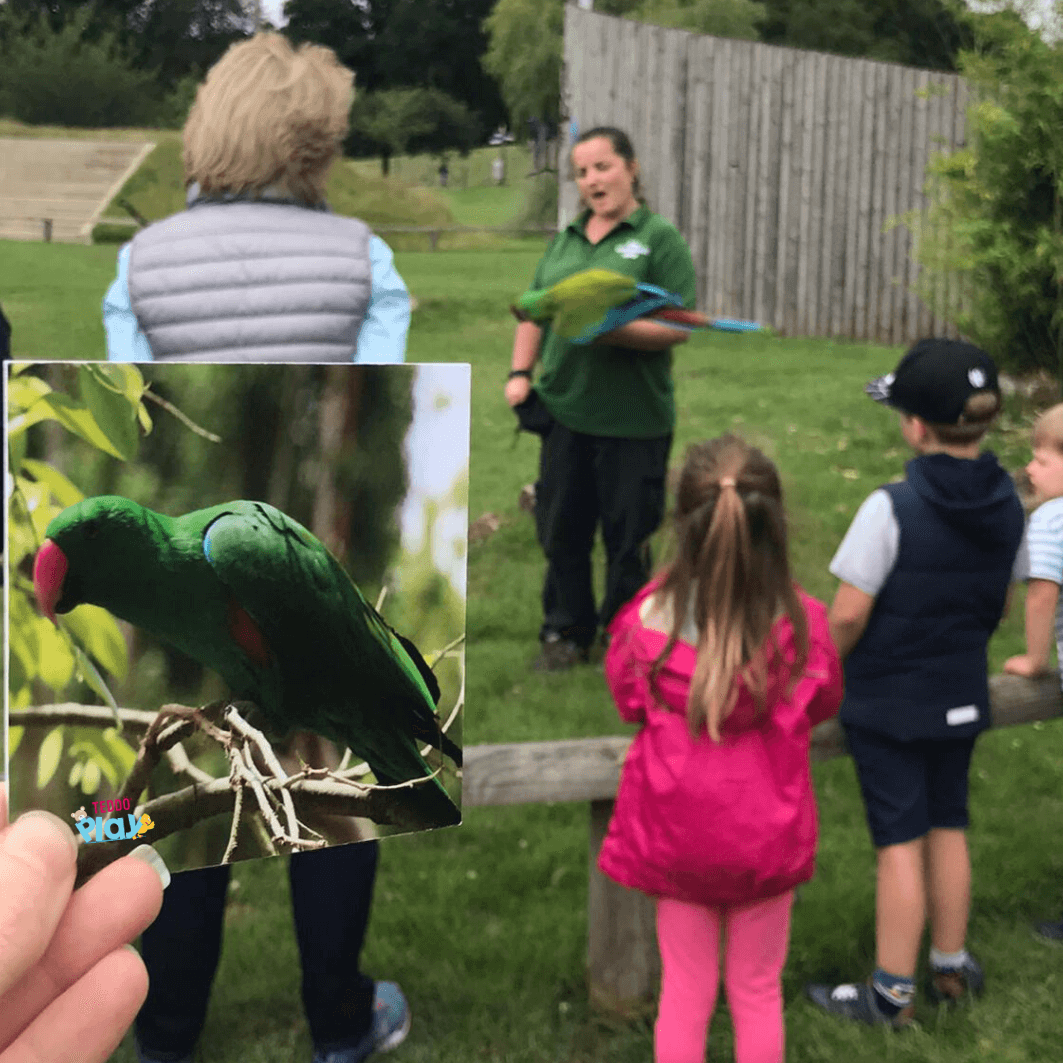 Holding a macaw educational field trip