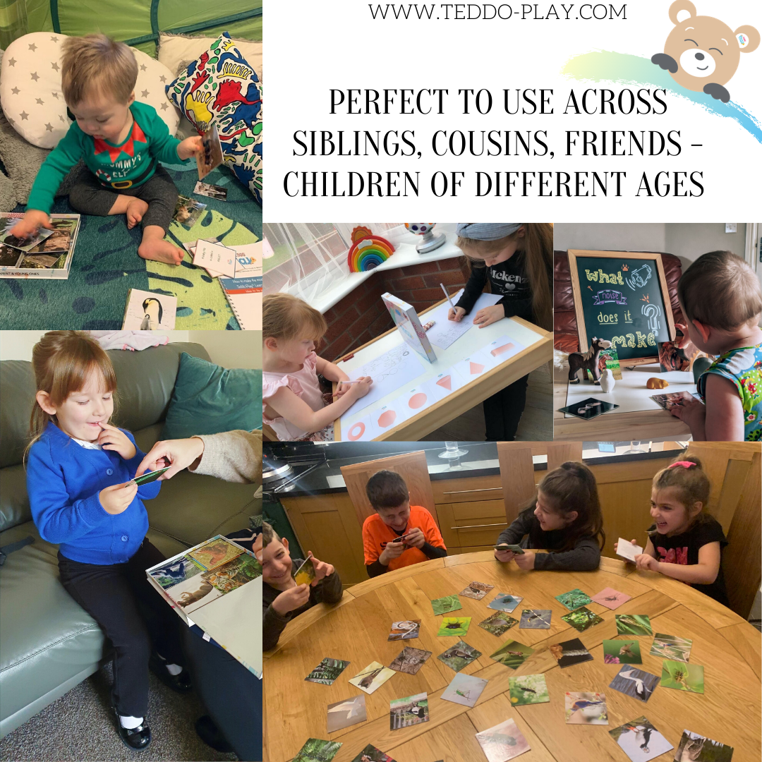 Teddo Play Learning Cards Grow with Children