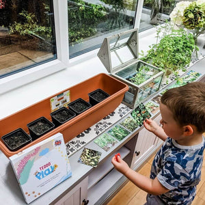 Teaching children gardening by giving them knowledge about foods