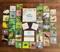 Beautiful Birds and Insects (Lesser-Known Facts Edition) Set of 40 Learning Cards