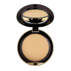 Conceal And Perfect Shine Proof Powder