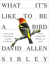 Load image into Gallery viewer, What It's Like To Be A Bird by David Allen Sibley