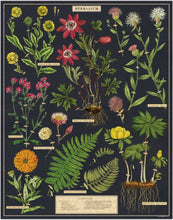 Load image into Gallery viewer, Herbarium Vintage Inspired 1000 Piece Puzzle