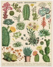 Load image into Gallery viewer, Cacti & Succulents Vintage Inspired 1000 Piece Puzzle