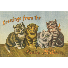 Load image into Gallery viewer, Postcard Greetings from the Catskills