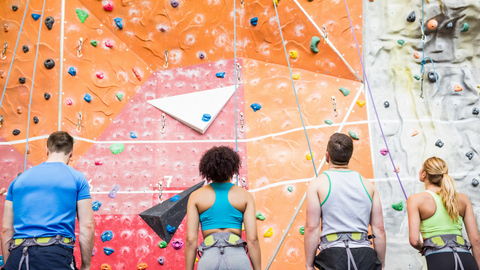 Climbing Wall - Team Building - The Panic Room Online