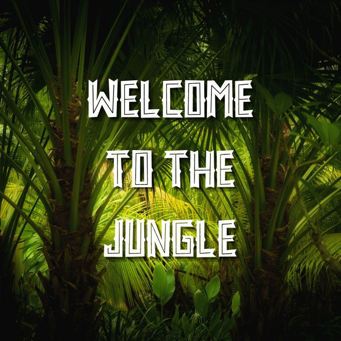 Welcome To The Jungle - Puzzle Cards - The Panic Room Escape Ltd