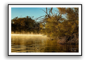 South Australia - Dalhousie Springs At Sunrise