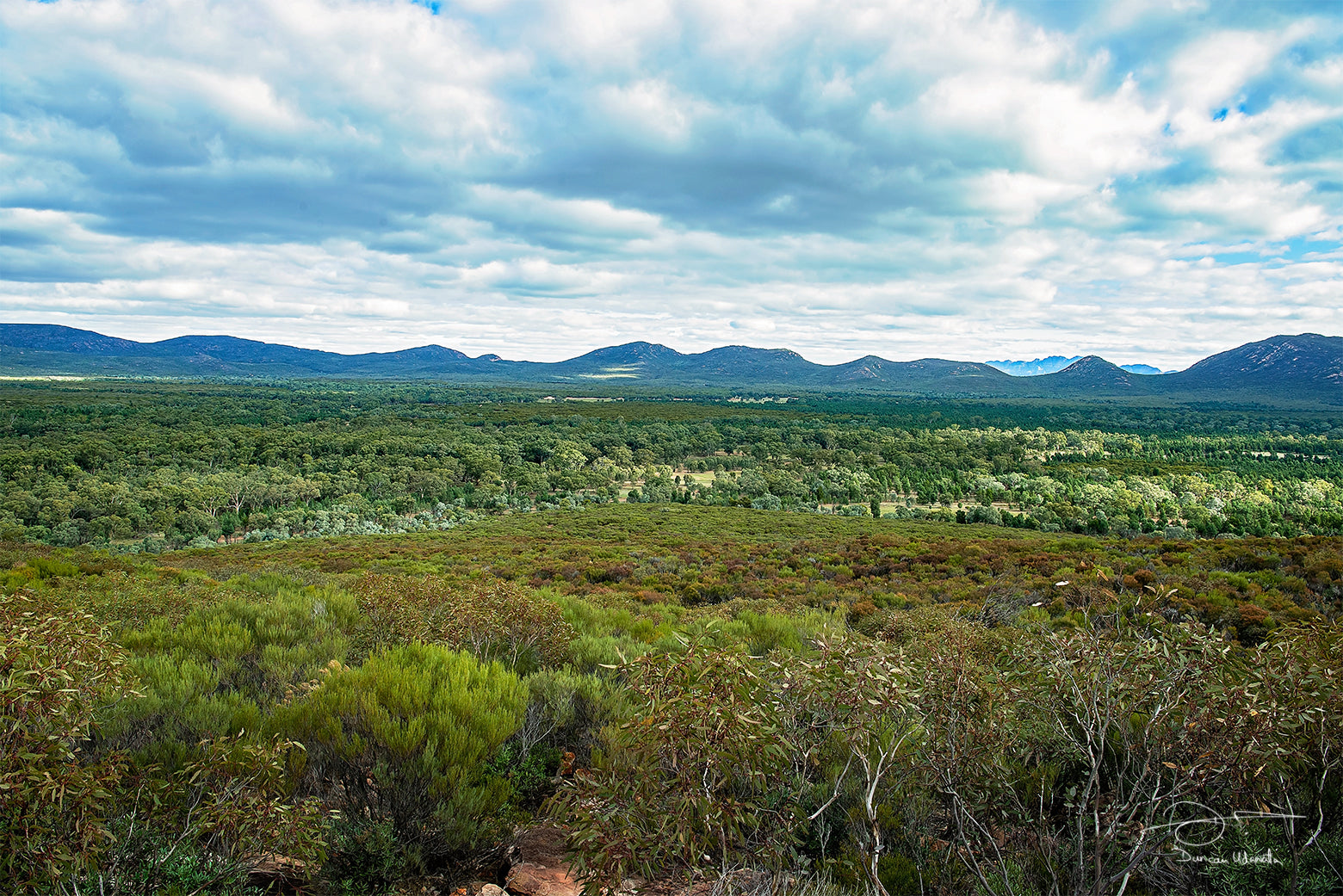 South Australia - Wilpena Pound