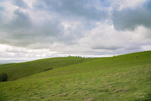 Load image into Gallery viewer, South Australia - Rolling Hills Of The Barossa