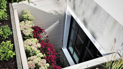 Flowers Planted in an egress window well