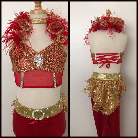 Red and Gold Costume