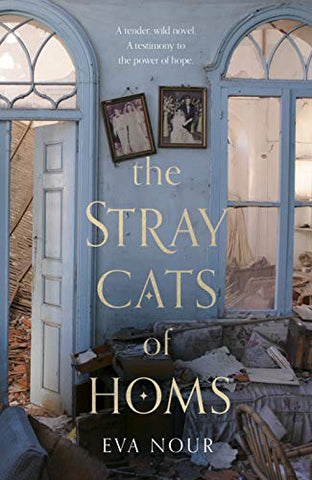 The Stray Cats of Homs - Paperback
