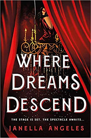 Where Dreams Descend Hardcover