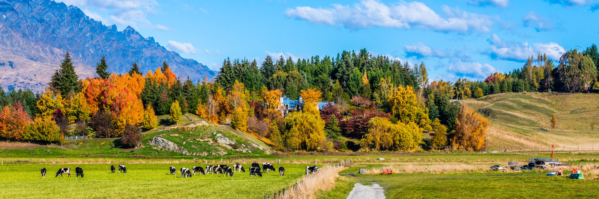 New Zealand Photography Tour – Day 1 – Queenstown to Lake Dunstan via Arrowtown