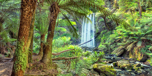 Window to Hopetoun Falls