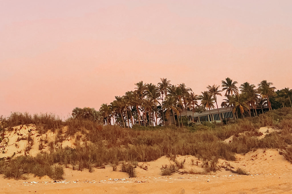 26 pink sky and palm trees