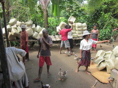 women organizing rearing basket distribution