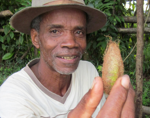farmer with cocoon