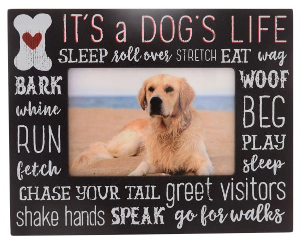 Dogs Life Frame 6x4