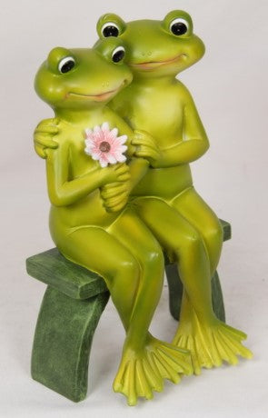 Frog Couple On Bench