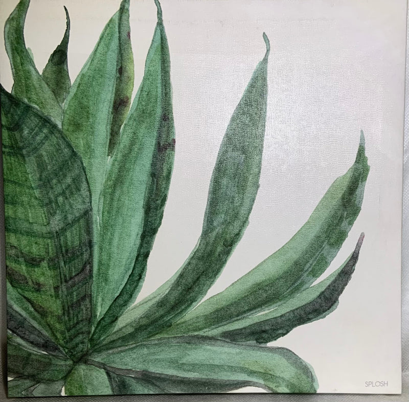 Palm Springs Canvas- Aloe