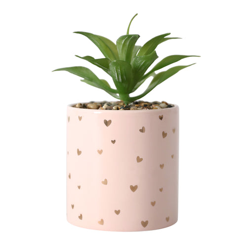 Mothers Day Love Hearts Pot Plant