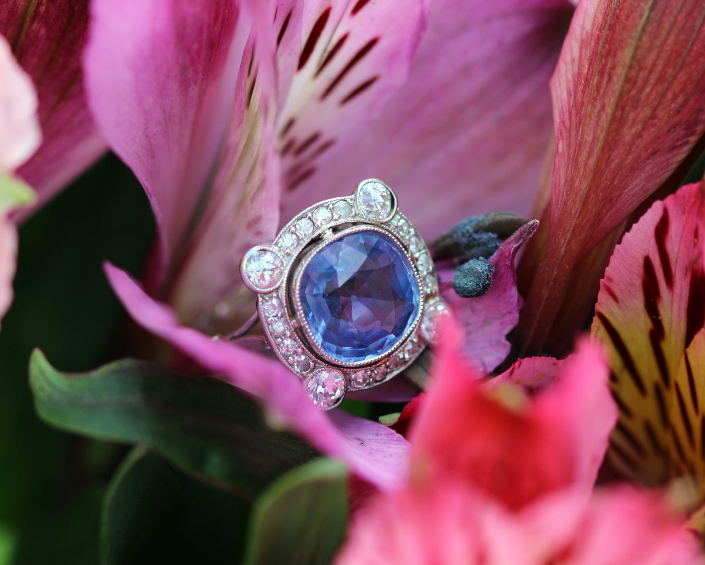 Latest Advert - 18 ct White Gold Cornflower Sapphire and Diamond Ring