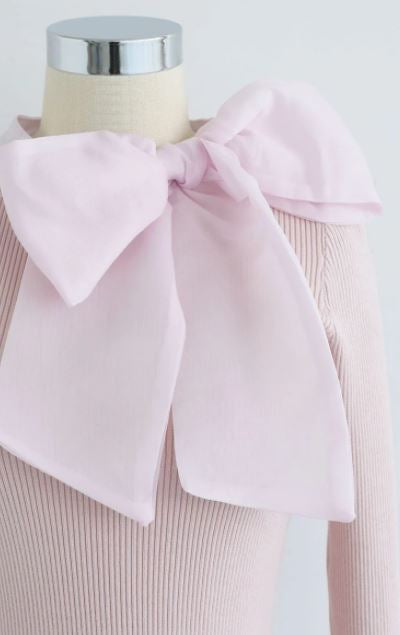 Fancy Bow Knot Knit Top