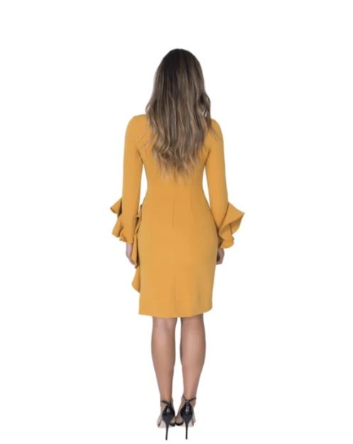 Long Sleeve Ruffle Cocktail
