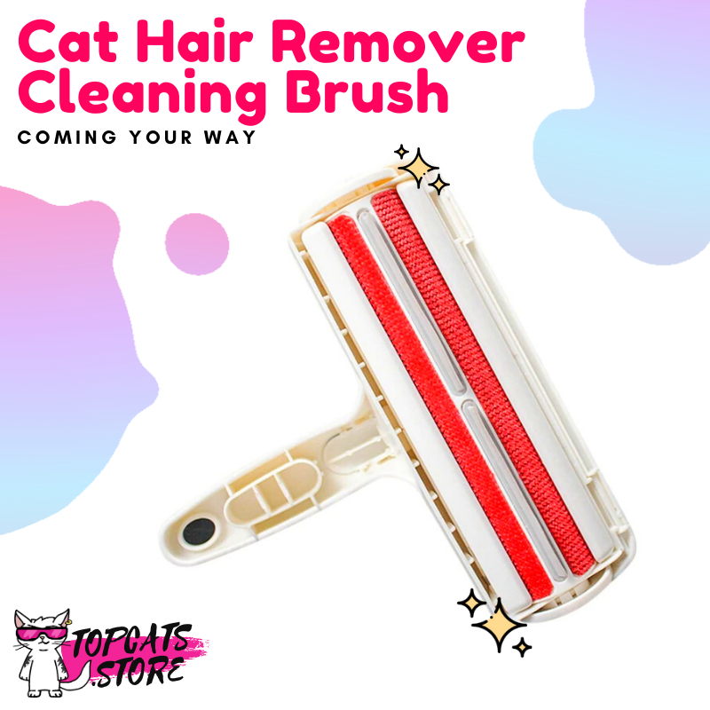 Cat Hair Remover Cleaning Brush - TopCats.Store