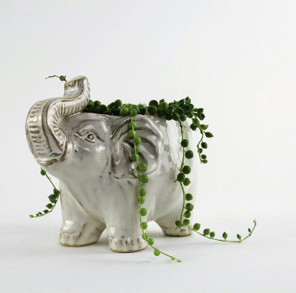 How To : Style the White Elephant Planter