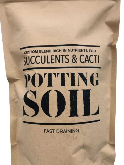 Generic Succulent and Cacti Potting Soil - 1 lb Bag Default House Plant Shop