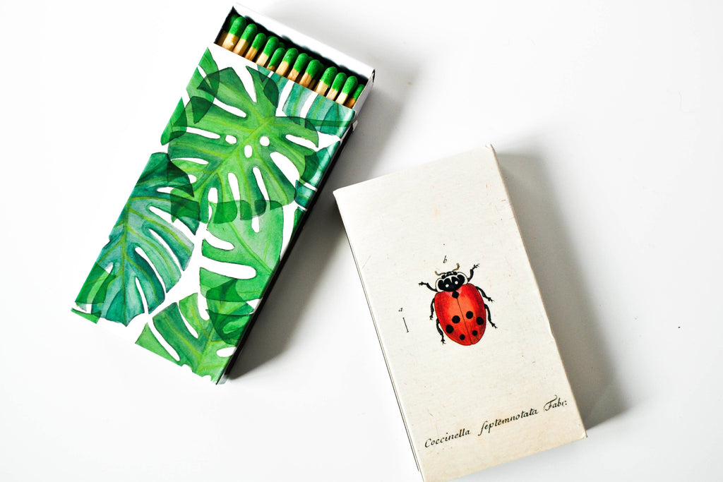 Monstera Leaf Matchbox Matches SproutSouth
