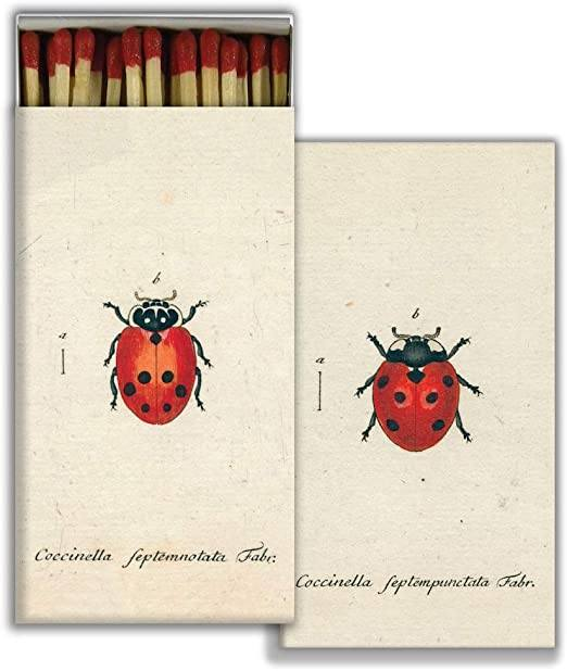 Red Ladybug Matchbox-SproutSouth-Matches