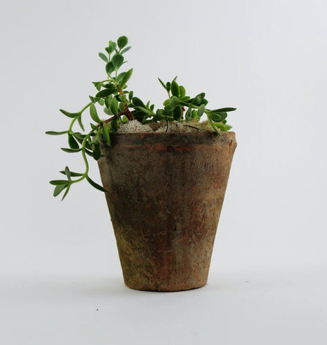 Rust & Grey Terracotta Planters-SproutSouth-Planter