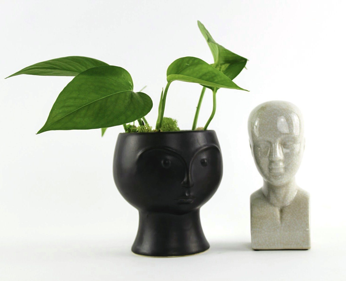 Sculptural Face Planter-SproutSouth-Planter