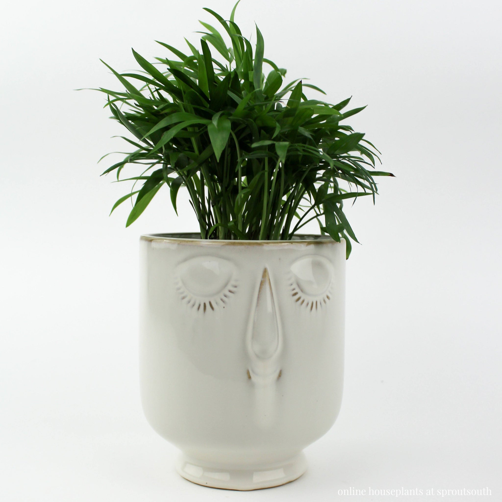 White & Teal Face Planters Planter SproutSouth