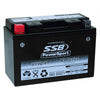 RT9B-4 High Peformance AGM Motorcycle Battery
